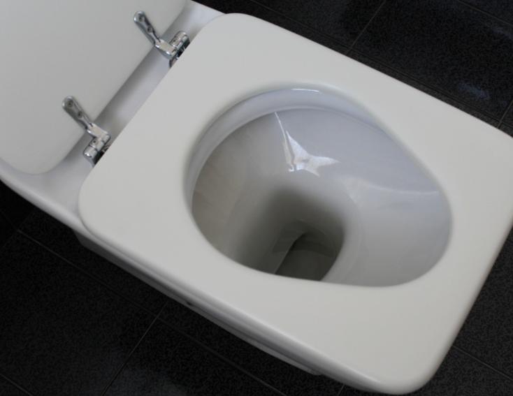 dusch wc aufsatz